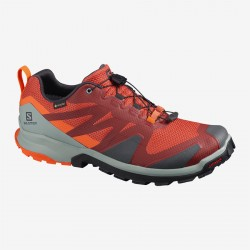 XA Rogg GTX H (burnt brick/phantm/red)